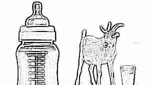 Стоит ли выбирать детскую смесь на козьем молоке?