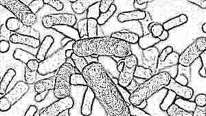 Бактерии в моче (бактериурия) у ребенка