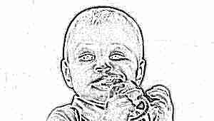 Какой лучше выбрать ниблер и с какого возраста его давать?