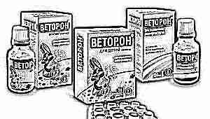 Витамины «Веторон» для детей