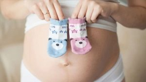 На какой неделе можно узнать пол ребенка по УЗИ?