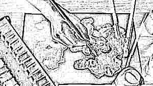 Как выбрать акварельные краски для ребенка?