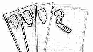 Бумага для пастели: особенности выбора