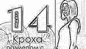 14 неделя беременности: что происходит с плодом и будущей мамой?