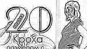 20 неделя беременности: что происходит с плодом и будущей мамой?