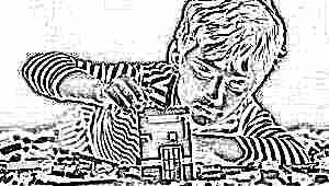 Модели конструкторов для мальчиков старше 5 лет