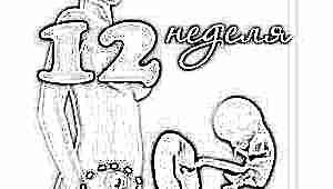 Развитие плода на 12 неделе беременности