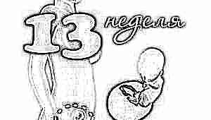 Развитие плода на 13 неделе беременности