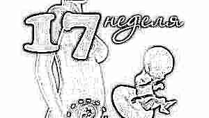 Развитие плода на 17 неделе беременности