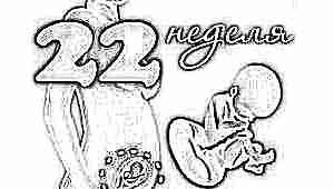 Развитие плода на 22 неделе беременности