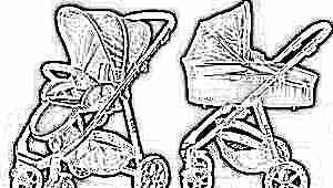 Коляски для новорожденных 2 в 1: особенности и тонкости выбора