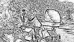 Летние модели колясок для новорожденных