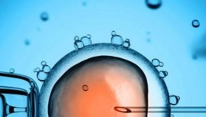 Вся статистика по ЭКО: от вероятности беременности с первого раза до процента осложнений