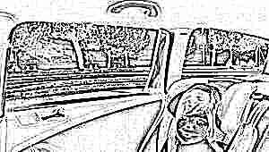 Как подобрать детское автомобильное кресло от 3 лет?