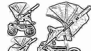 Модельный ряд прогулочных колясок фирмы Babyton