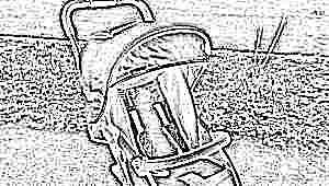 Прогулочные коляски Lider Kids: обзор моделей и особенности выбора