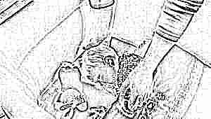 Почему ребенок не хочет спать в своей кроватке и что делать?