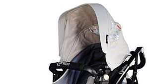 Прогулочные коляски Carolina: характеристики и модельный ряд