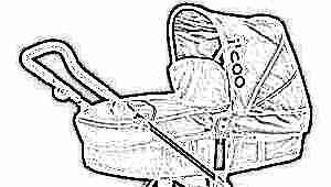 Модельный ряд и особенности колясок iСoo