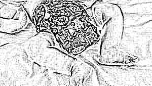 Всё о подгузниках для новорожденных: разновидности и тонкости выбора