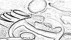Овощи для детей: свойства, введение в рацион и рецепты блюд