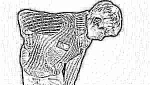 Психосоматика проблем с копчиком у взрослых и детей