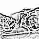 Какие витамины лучше выбрать для ребенка 4 лет?