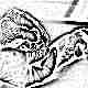 Норма нейтрофилов в крови у детей