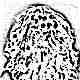 Без паники: освобождаем волосы от Bunchems