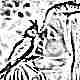 Что такое анималотерапия и в чем ее польза для детей?