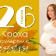 26 неделя беременности: что происходит с плодом и будущей мамой?