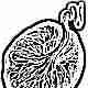 Что означает вторая степень зрелости плаценты и какой неделе беременности она соответствует в норме?
