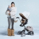 Прогулочные коляски для зимы: обзор самых популярных моделей