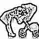 Разновидности колясок-премиум и особенности выбора