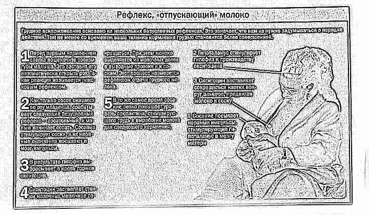 Комаровский Форум