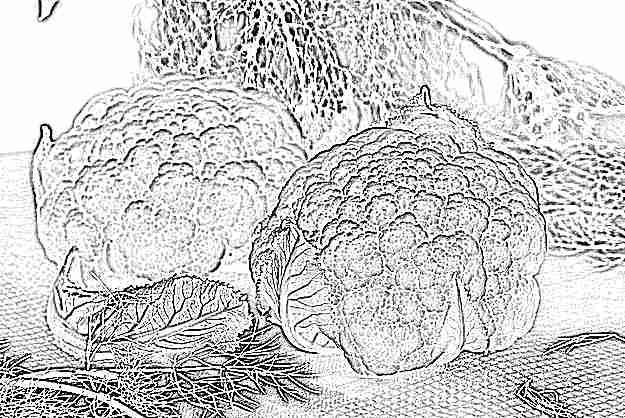 Приготовить цветную капусту для прикорма