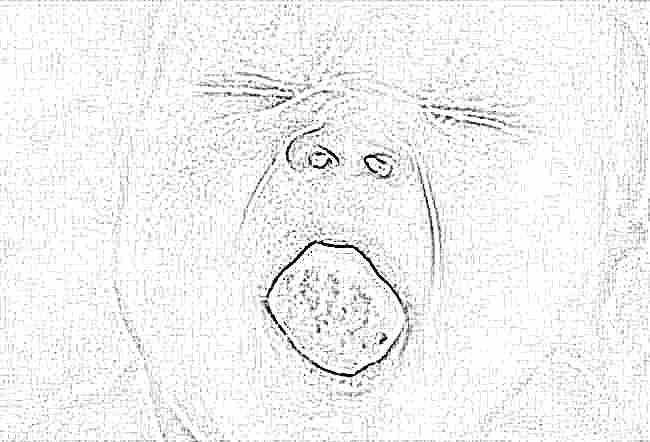 неприятный запах изо рта у подростка причины