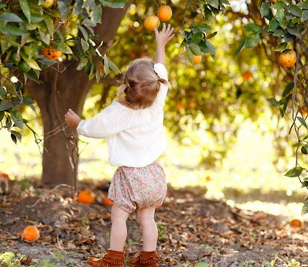 аллергия на апельсины и мандарины