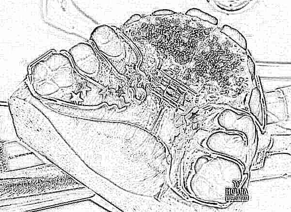 Как очистить пластинку для зубов