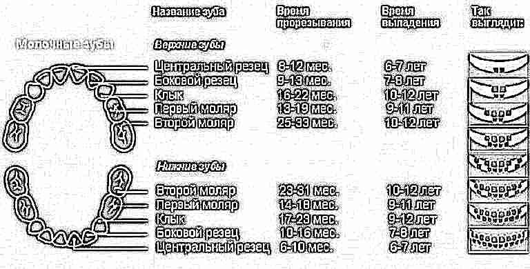 Как научиться наращивать акрилом ногти Пошаговая инструкция, как дома