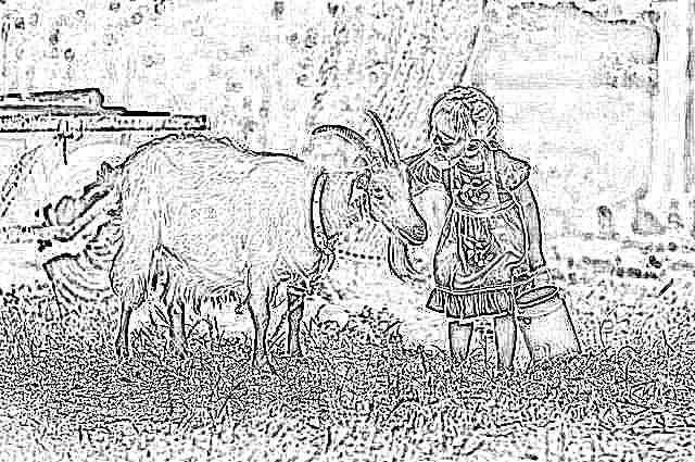 Козье молоко для ребенка
