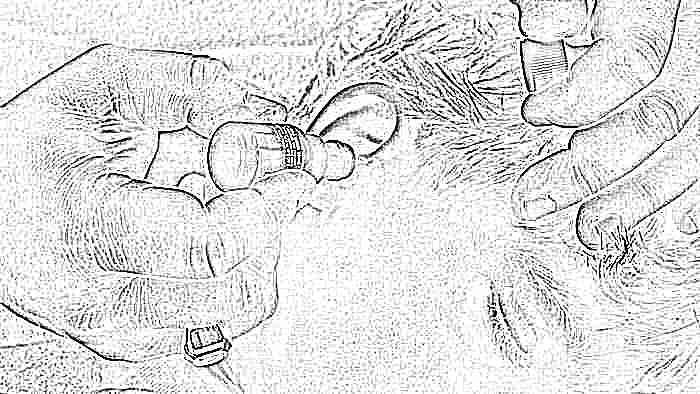 Как лечить ухо в домашних условиях у ребенка