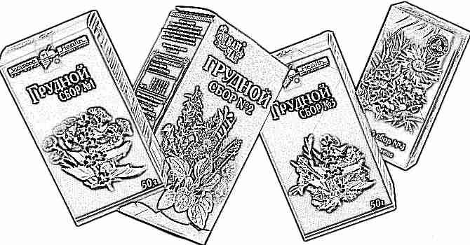 Лекарственные травы от кашля для детей до 3 лет
