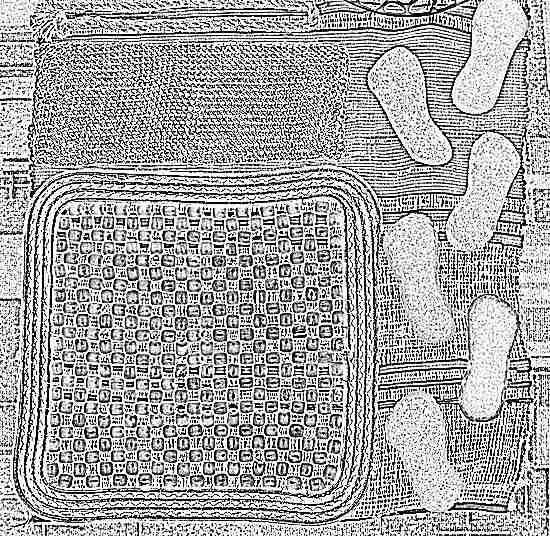 Гимнастический коврик своими руками
