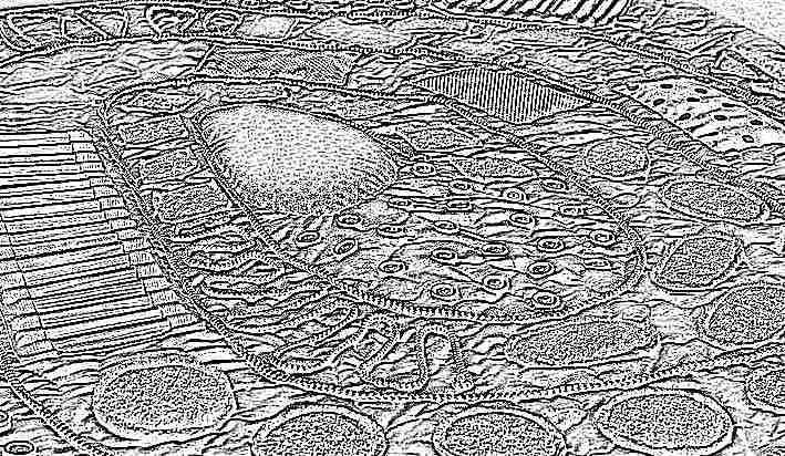 Массажные коврики для детей своими руками фото фото 407