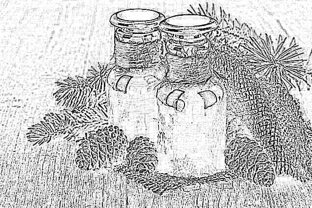 Пихтовое масло от насморка рецепты для применения