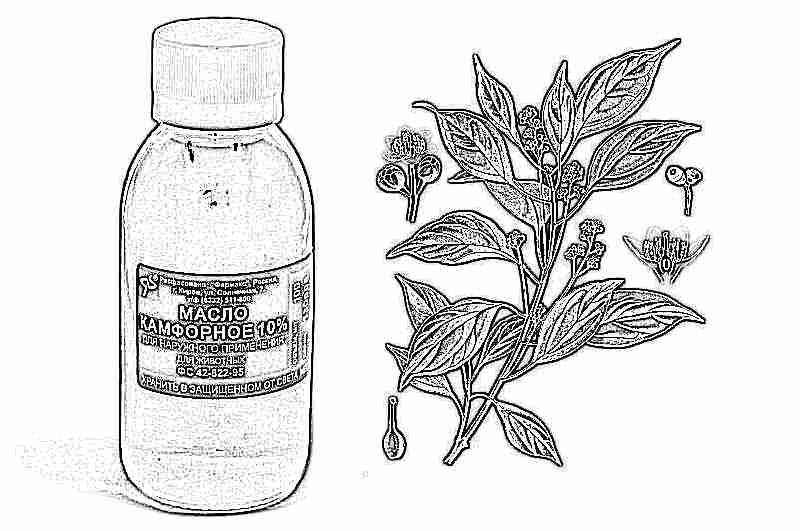 Камфорное масло при ушной боли