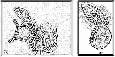 Дизайн френча ногтей со стразами фото новинки