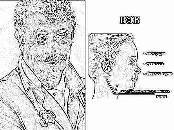 Вирус Эпштейна — Барр (ВЭБ): что это такое, симптоматика, лечение