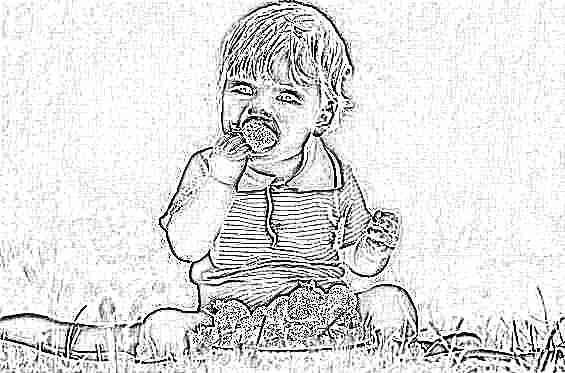проявление пищевой аллергии у взрослых